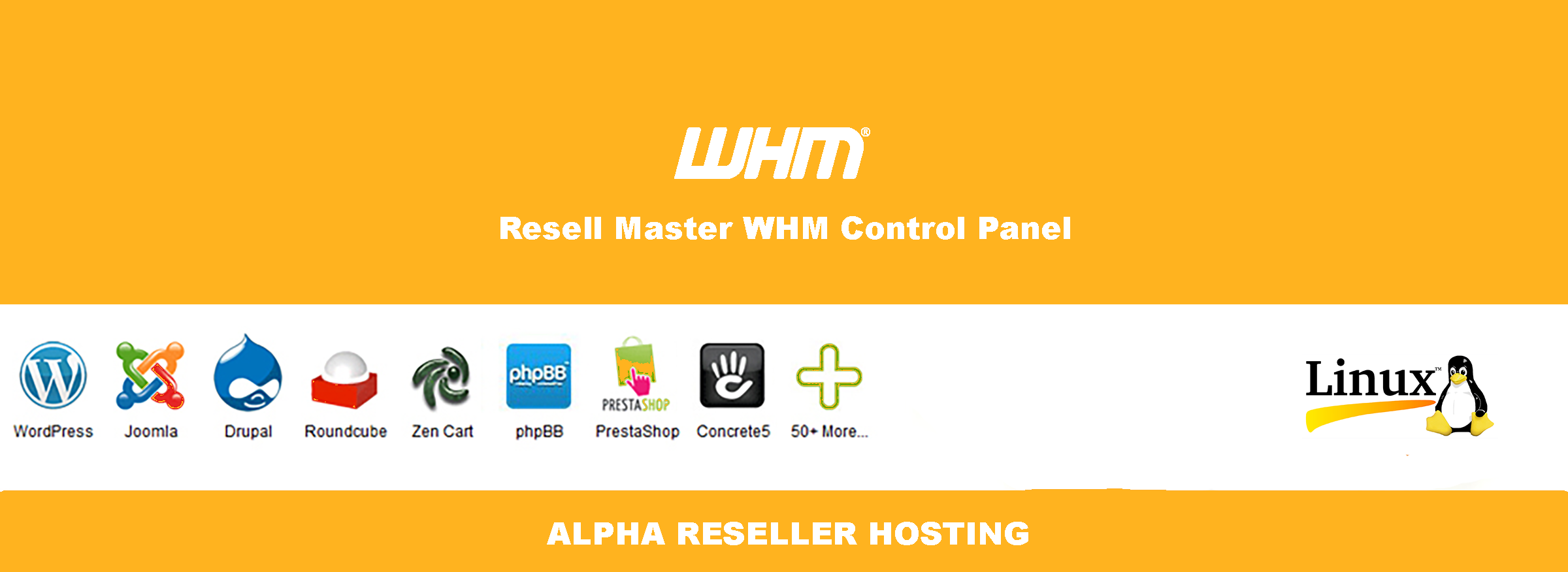 Alpha Reseller Hosting in india