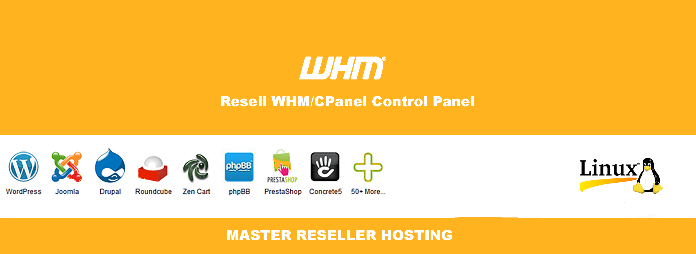 Master Reseller Hosting in india